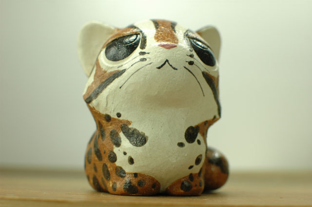 ツシマヤマネコの画像 p1_19